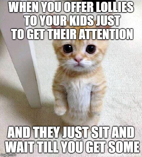 Cute Cat Meme | WHEN YOU OFFER LOLLIES TO YOUR KIDS JUST TO GET THEIR ATTENTION AND THEY JUST SIT AND WAIT TILL YOU GET SOME | image tagged in memes,cute cat | made w/ Imgflip meme maker
