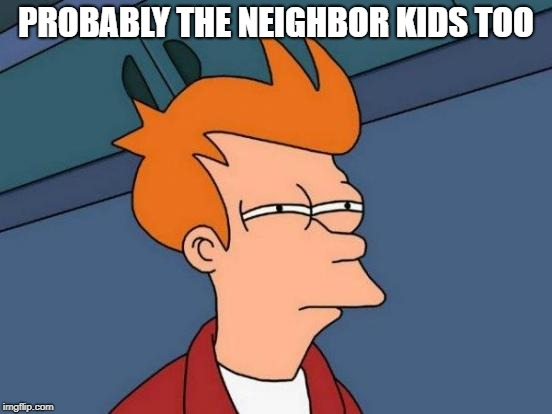 Futurama Fry Meme | PROBABLY THE NEIGHBOR KIDS TOO | image tagged in memes,futurama fry | made w/ Imgflip meme maker