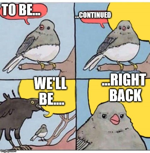 annoyed bird | TO BE... ...CONTINUED WE'LL BE.... ...RIGHT BACK | image tagged in annoyed bird | made w/ Imgflip meme maker