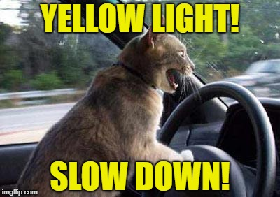 YELLOW LIGHT! SLOW DOWN! | made w/ Imgflip meme maker