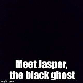 Meet Jasper, the black ghost | made w/ Imgflip meme maker