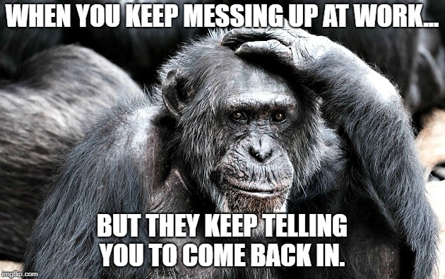 monkey business | WHEN YOU KEEP MESSING UP AT WORK... BUT THEY KEEP TELLING YOU TO COME BACK IN. | image tagged in monkey business,work sucks,ya'll mother fuckers | made w/ Imgflip meme maker