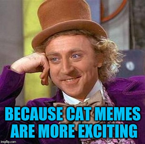 Creepy Condescending Wonka Meme | BECAUSE CAT MEMES ARE MORE EXCITING | image tagged in memes,creepy condescending wonka | made w/ Imgflip meme maker