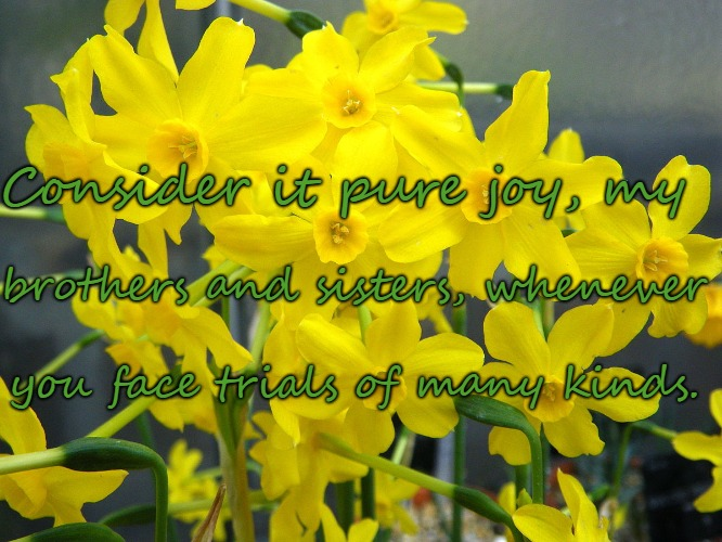 James 1:2 Pure Joy to Face Trials of Many Kinds | brothers and sisters, whenever Consider it pure joy, my you face trials of many kinds. | image tagged in holy bible,bible verse,holy spirit,bible,verse,god | made w/ Imgflip meme maker