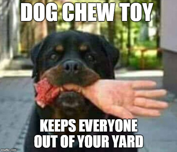 Don't like uninvited house guests?  | DOG CHEW TOY KEEPS EVERYONE OUT OF YOUR YARD | image tagged in dogs,chew toy,rottweiler,unwanted house guest,memes | made w/ Imgflip meme maker