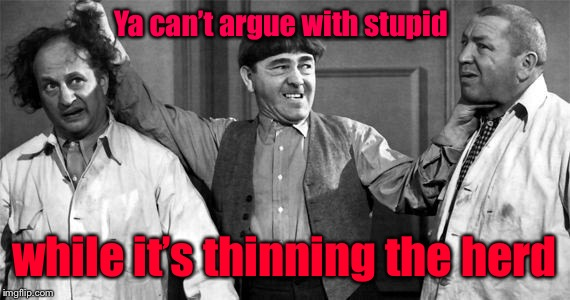 Three Stooges | Ya can't argue with stupid while it's thinning the herd | image tagged in three stooges | made w/ Imgflip meme maker