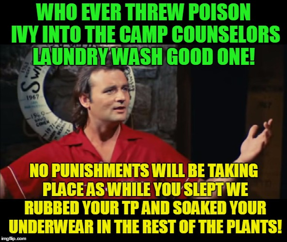 Itchy and scratchy! | WHO EVER THREW POISON IVY INTO THE CAMP COUNSELORS LAUNDRY WASH GOOD ONE! NO PUNISHMENTS WILL BE TAKING PLACE AS WHILE YOU SLEPT WE RUBBED Y | image tagged in summer camp problems bill murray,pranks,poison ivy,annoying people | made w/ Imgflip meme maker