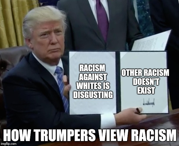 Trump Bill Signing Meme | RACISM AGAINST WHITES IS DISGUSTING OTHER RACISM DOESN'T EXIST HOW TRUMPERS VIEW RACISM | image tagged in memes,trump bill signing | made w/ Imgflip meme maker