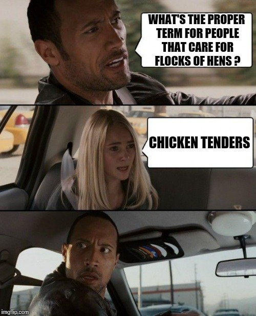 The Rock Driving Meme | WHAT'S THE PROPER TERM FOR PEOPLE THAT CARE FOR FLOCKS OF HENS ? CHICKEN TENDERS | image tagged in memes,the rock driving | made w/ Imgflip meme maker