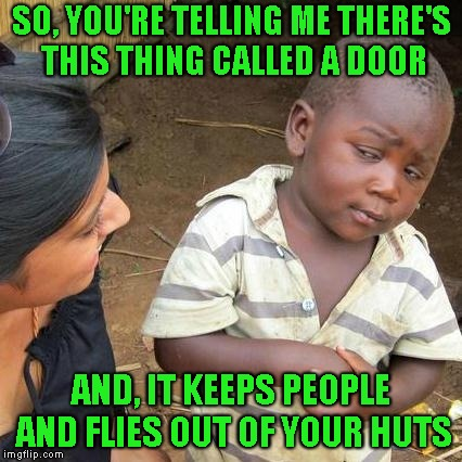 Third World Skeptical Kid Meme | SO, YOU'RE TELLING ME THERE'S THIS THING CALLED A DOOR AND, IT KEEPS PEOPLE AND FLIES OUT OF YOUR HUTS | image tagged in memes,third world skeptical kid | made w/ Imgflip meme maker