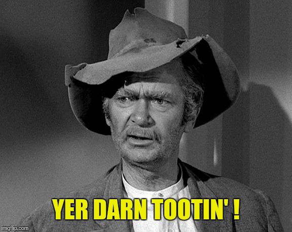 Jed Clampett | YER DARN TOOTIN' ! | image tagged in jed clampett | made w/ Imgflip meme maker