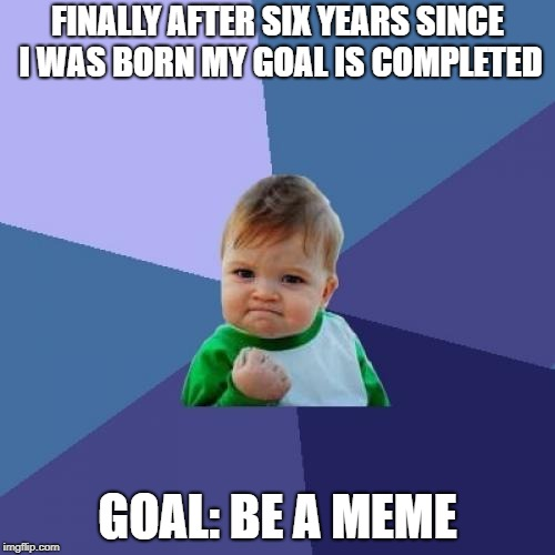 Success Kid | FINALLY AFTER SIX YEARS SINCE I WAS BORN MY GOAL IS COMPLETED GOAL: BE A MEME | image tagged in memes,success kid | made w/ Imgflip meme maker