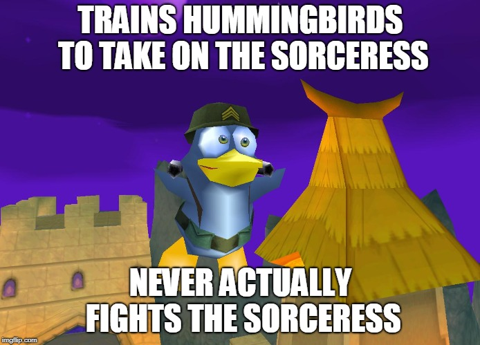 TRAINS HUMMINGBIRDS TO TAKE ON THE SORCERESS; NEVER ACTUALLY FIGHTS THE SORCERESS | image tagged in james byrd | made w/ Imgflip meme maker