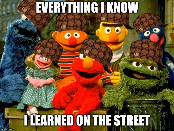 EVERYTHING I KNOW I LEARNED ON THE STREET | image tagged in sesame street birthday,scumbag | made w/ Imgflip meme maker