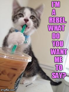 I'M A       REBEL. WHAT  DO     YOU     WANT    ME     TO     SAY? | made w/ Imgflip meme maker