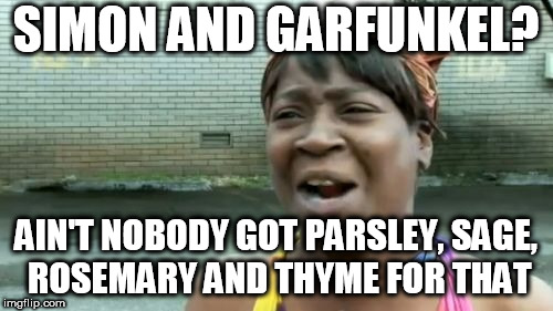 Ain't Nobody Got Time For That | SIMON AND GARFUNKEL? AIN'T NOBODY GOT PARSLEY, SAGE, ROSEMARY AND THYME FOR THAT | image tagged in memes,aint nobody got time for that,simon and garfunkel | made w/ Imgflip meme maker