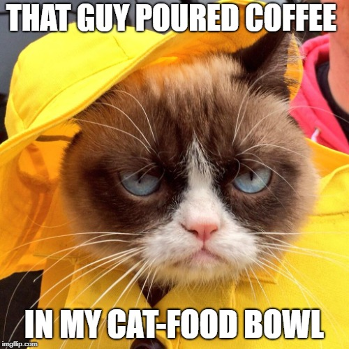 THAT GUY POURED COFFEE IN MY CAT-FOOD BOWL | made w/ Imgflip meme maker