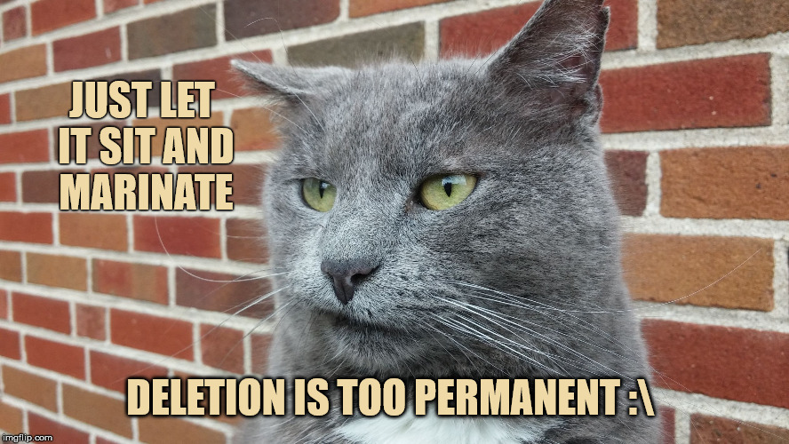 Evil Cat | JUST LET IT SIT AND MARINATE DELETION IS TOO PERMANENT : | image tagged in evil cat | made w/ Imgflip meme maker