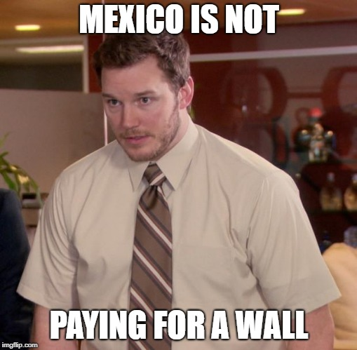Afraid To Ask Andy Meme | MEXICO IS NOT PAYING FOR A WALL | image tagged in memes,afraid to ask andy | made w/ Imgflip meme maker