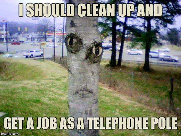 Deep Tree Thoughts | I SHOULD CLEAN UP AND GET A JOB AS A TELEPHONE POLE | image tagged in disapproving tree,memes,job,stupid | made w/ Imgflip meme maker