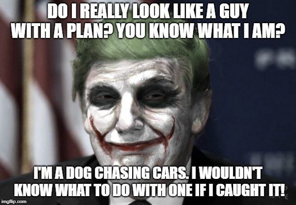 Trump with no plan | DO I REALLY LOOK LIKE A GUY WITH A PLAN? YOU KNOW WHAT I AM? I'M A DOG CHASING CARS. I WOULDN'T KNOW WHAT TO DO WITH ONE IF I CAUGHT IT! | image tagged in donald trump,trump,logic has no place here | made w/ Imgflip meme maker