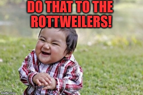 Evil Toddler Meme | DO THAT TO THE ROTTWEILERS! | image tagged in memes,evil toddler | made w/ Imgflip meme maker