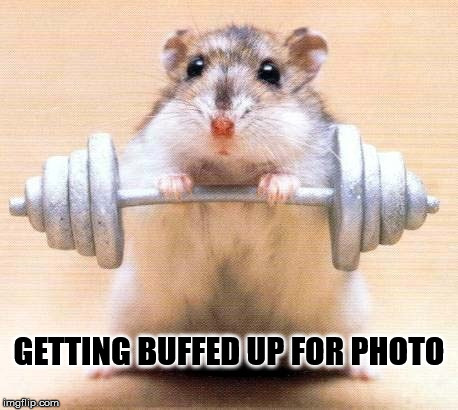 GETTING BUFFED UP FOR PHOTO | made w/ Imgflip meme maker