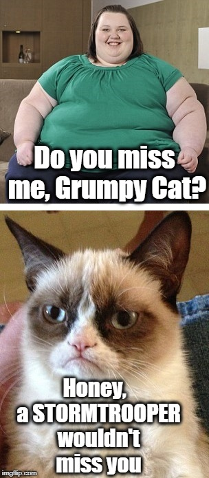 On a steamy hot summer day,  you can always count on Grumpy Cat to be ice cold! | Do you miss me, Grumpy Cat? Honey,  a STORMTROOPER wouldn't miss you | image tagged in grumpy cat,cold reply | made w/ Imgflip meme maker