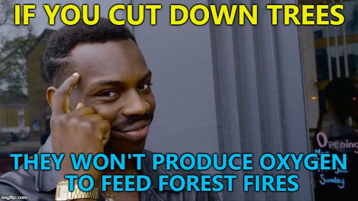 Problem solved :) | IF YOU CUT DOWN TREES THEY WON'T PRODUCE OXYGEN TO FEED FOREST FIRES | image tagged in memes,roll safe think about it,forest fire,trees | made w/ Imgflip meme maker