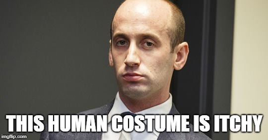 THIS HUMAN COSTUME IS ITCHY | image tagged in steven miller | made w/ Imgflip meme maker