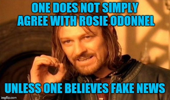 One Does Not Simply Meme | ONE DOES NOT SIMPLY AGREE WITH ROSIE ODONNEL UNLESS ONE BELIEVES FAKE NEWS | image tagged in memes,one does not simply | made w/ Imgflip meme maker