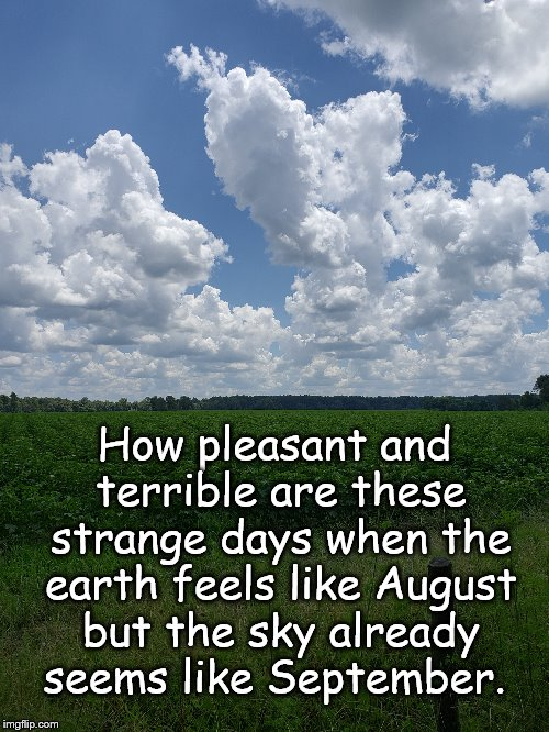 August Earth, September Sky | How pleasant and terrible are these strange days when the earth feels like August but the sky already seems like September. | image tagged in sky,clouds,august,september | made w/ Imgflip meme maker
