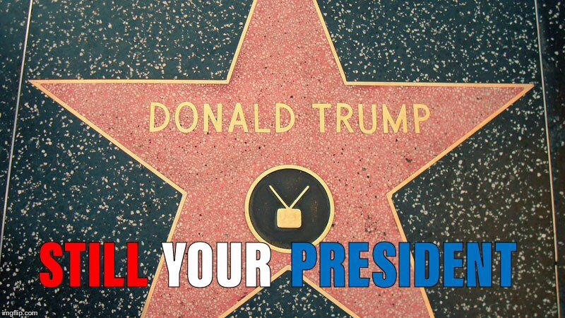 Trump Star Meme | image tagged in donald trump,maga,not my president | made w/ Imgflip meme maker