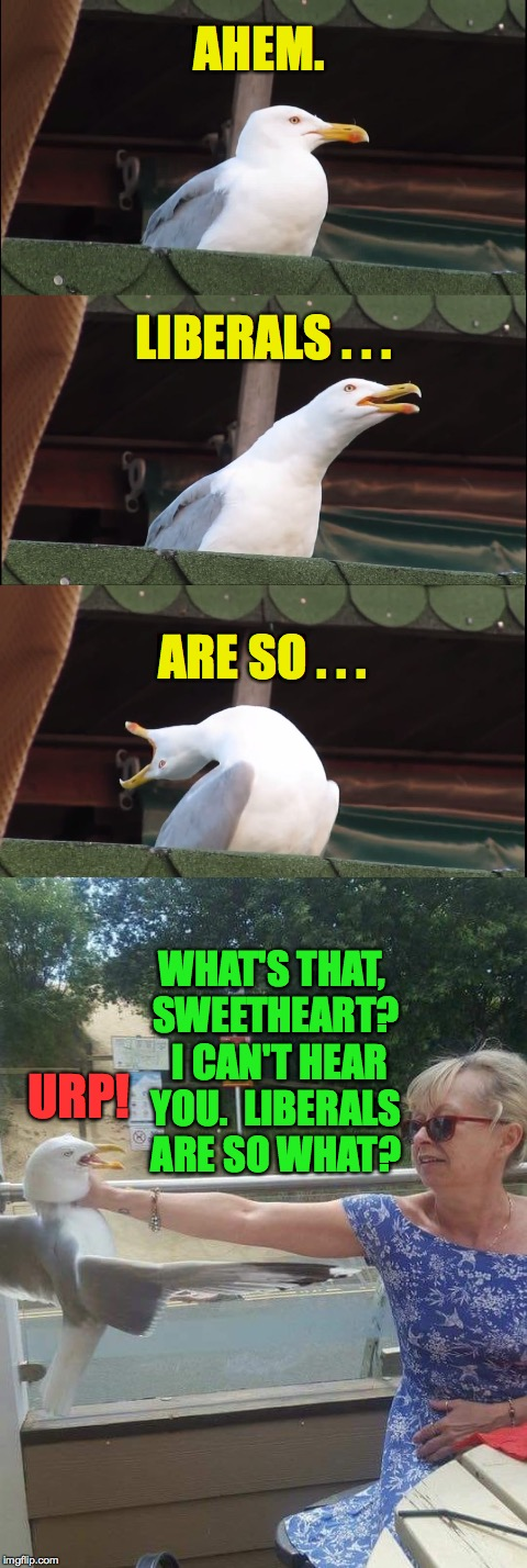 We interrupt this broadcast because it needed doing (and I've never been crazy about this template). | AHEM. WHAT'S THAT, SWEETHEART?  I CAN'T HEAR YOU.  LIBERALS ARE SO WHAT? LIBERALS . . . ARE SO . . . URP! | image tagged in memes,liberals,inhaling seagull | made w/ Imgflip meme maker