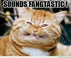 Cat | SOUNDS FANGTASTIC ! | image tagged in cat | made w/ Imgflip meme maker
