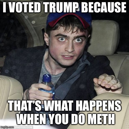 harry potter crazy | I VOTED TRUMP BECAUSE THAT'S WHAT HAPPENS WHEN YOU DO METH | image tagged in harry potter crazy | made w/ Imgflip meme maker