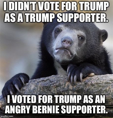 Confession Bear Meme | I DIDN'T VOTE FOR TRUMP AS A TRUMP SUPPORTER. I VOTED FOR TRUMP AS AN ANGRY BERNIE SUPPORTER. | image tagged in memes,confession bear,AdviceAnimals | made w/ Imgflip meme maker