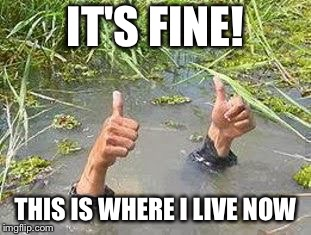 FLOODING THUMBS UP | IT'S FINE! THIS IS WHERE I LIVE NOW | image tagged in flooding thumbs up | made w/ Imgflip meme maker