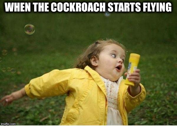 Chubby Bubbles Girl Meme | WHEN THE COCKROACH STARTS FLYING | image tagged in memes,chubby bubbles girl | made w/ Imgflip meme maker