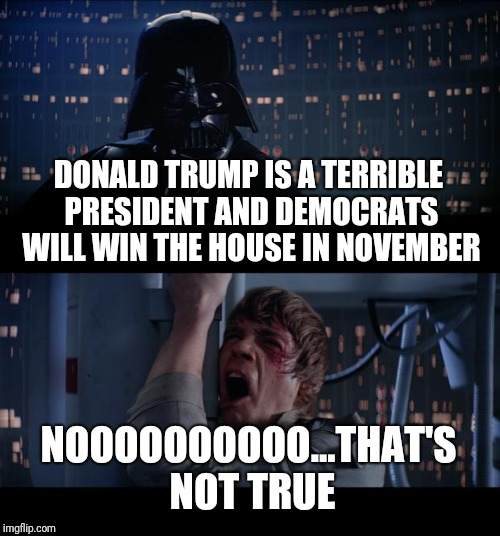 How Trump supporters have reacted to the special election results | DONALD TRUMP IS A TERRIBLE PRESIDENT AND DEMOCRATS WILL WIN THE HOUSE IN NOVEMBER NOOOOOOOOOO...THAT'S NOT TRUE | image tagged in memes,star wars no,donald trump,election | made w/ Imgflip meme maker