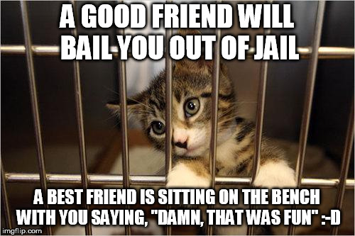 "On fraudulent charges, of course | A GOOD FRIEND WILL BAIL YOU OUT OF JAIL A BEST FRIEND IS SITTING ON THE BENCH WITH YOU SAYING, ""DAMN, THAT WAS FUN"" :-D 