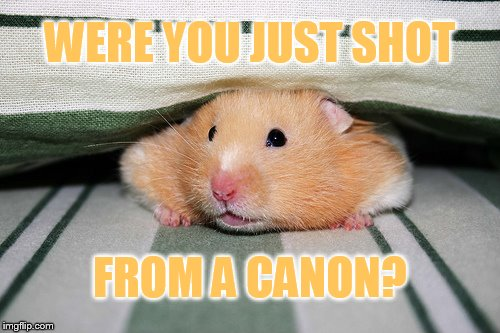 WERE YOU JUST SHOT FROM A CANON? | made w/ Imgflip meme maker