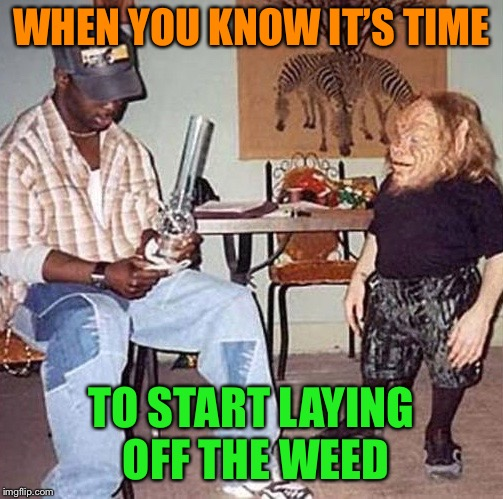They must've got into Gandalf's stash | WHEN YOU KNOW IT'S TIME TO START LAYING OFF THE WEED | image tagged in smoking,too much,weed,funny memes | made w/ Imgflip meme maker