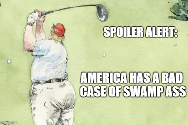 Drain the Swamp, My Ass | SPOILER ALERT: AMERICA HAS A BAD CASE OF SWAMP ASS | image tagged in corruption,trump,collins | made w/ Imgflip meme maker