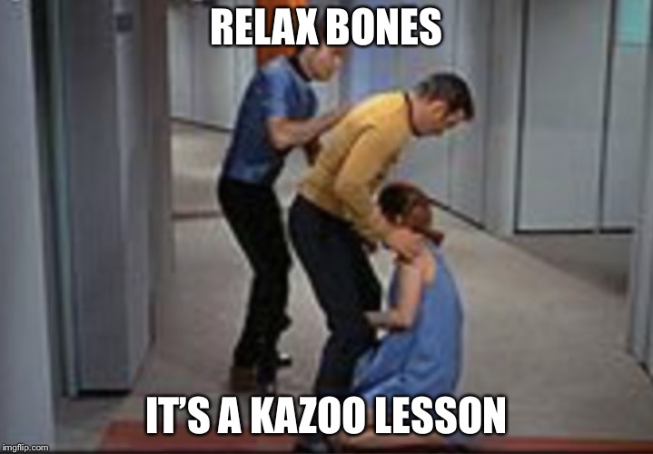 Job promotion | RELAX BONES IT'S A KAZOO LESSON | image tagged in job promotion | made w/ Imgflip meme maker