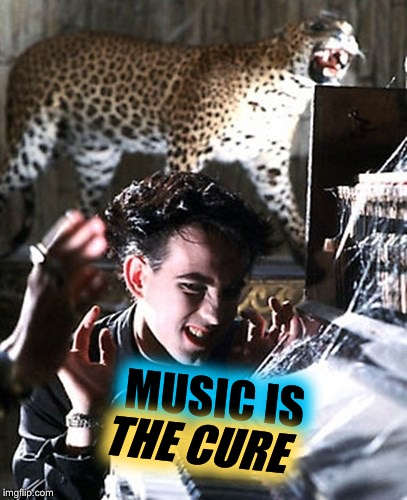 MUSIC IS THE CURE | made w/ Imgflip meme maker