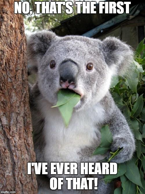 Surprised Koala Meme | NO, THAT'S THE FIRST I'VE EVER HEARD OF THAT! | image tagged in memes,surprised koala | made w/ Imgflip meme maker