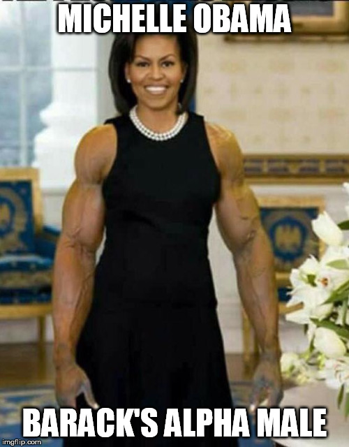 MICHELLE OBAMA BARACK'S ALPHA MALE | image tagged in obama | made w/ Imgflip meme maker