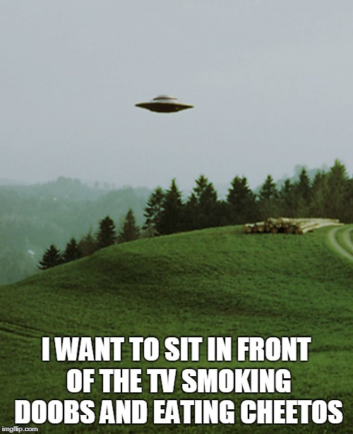 I WANT TO SIT IN FRONT OF THE TV SMOKING DOOBS AND EATING CHEETOS | made w/ Imgflip meme maker