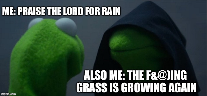 Evil Kermit | ME: PRAISE THE LORD FOR RAIN ALSO ME: THE F&@)ING GRASS IS GROWING AGAIN | image tagged in memes,evil kermit | made w/ Imgflip meme maker